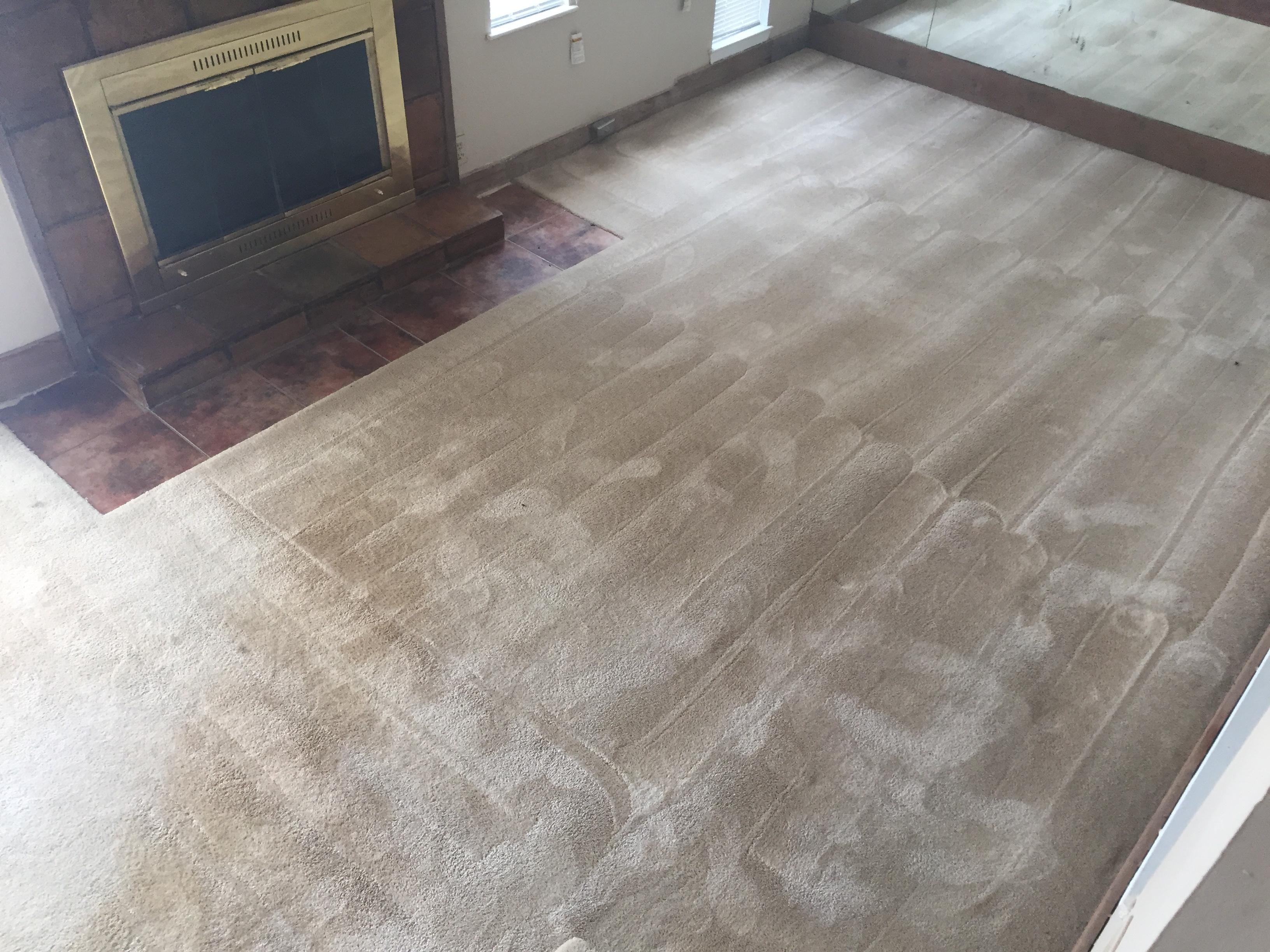 Harley color carpet tiles - 8171 Harley Square